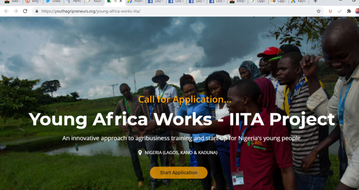 The International Institute for Tropical Agriculture (IITA) Training Application