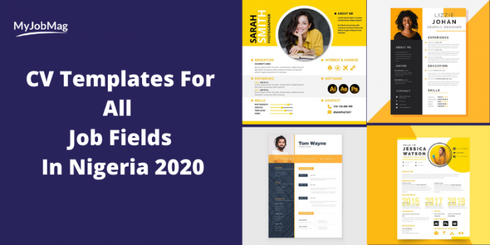 CV Templates for all Job Fields in Nigeria 2021