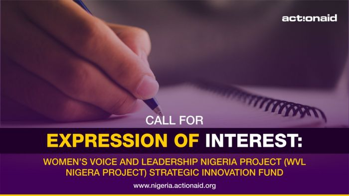Call for Expression of Interest: Women's Voice and Leadership Nigeria Project (WVL Nigera Project) Strategic Innovation Fund