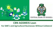The Federal Governments Agri-Business/Small and Medium Enterprise Investment Scheme